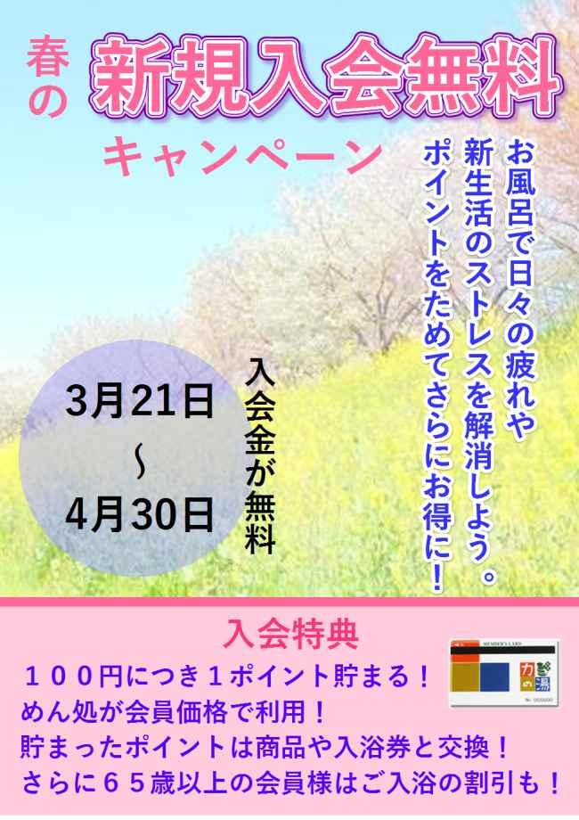 春の新規入会キャンペーン♪